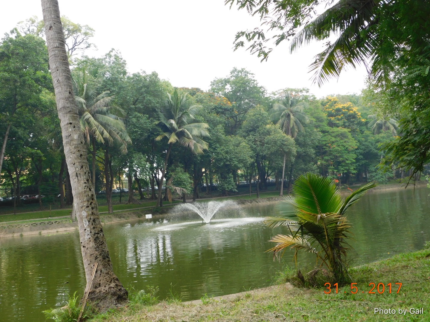 Bach Thao Park Hanoi Botanical Gardens The View From Our Seat